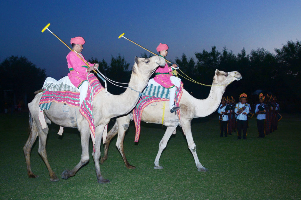 india-gda-global-dmc-alliance-Camel Polo-10