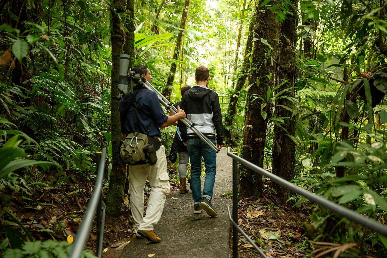 costa-rica-aerial-gda-global-dmc-alliance-rainforest-beyond-travel-incentives-Birdwatching2-min