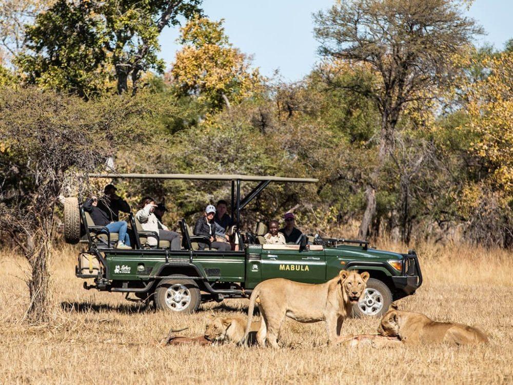 south-africa-gda-global-dmc-alliance-conference-safari-Mabula-GD-min