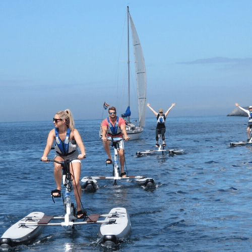 south-africa-giltedge-water-bikes-dmc-incentive-teambuilding-gda-global-dmc-alliance-min-featured