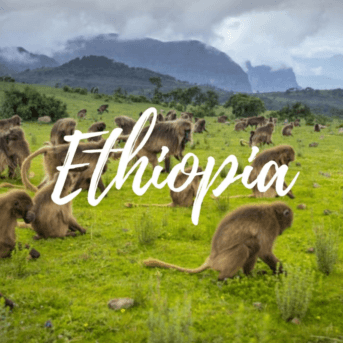 ethiopia-gda-global-dmc-alliance-etincel-business-travel-africa-addis-ababa-events-industry